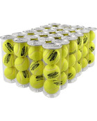 Case of 24 Cans - 72 Balls Total